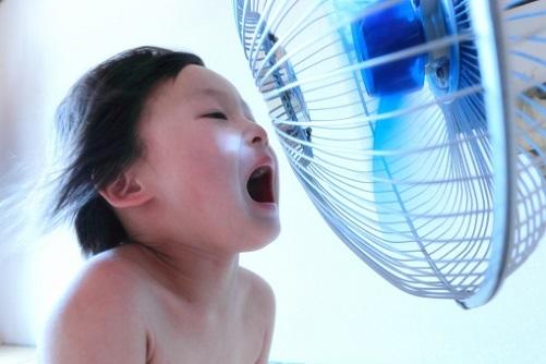 福岡の気温と気候