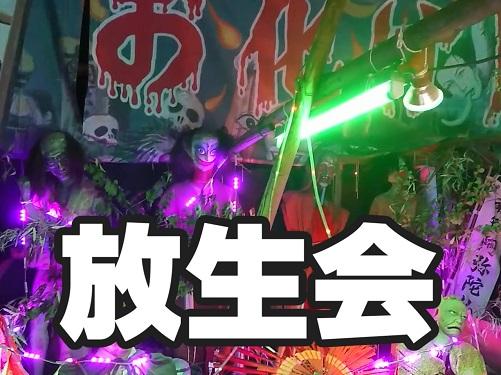 福岡の放生会に行ったよ!
